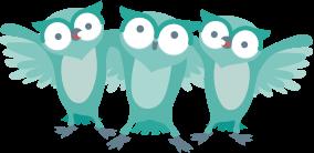 partner_owlteam
